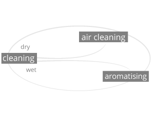 THE CLEANING SYSTEM